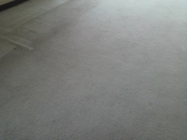 絨毯の黒ずんだ汚れ01