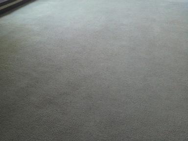 絨毯の黒ずんだ汚れ04